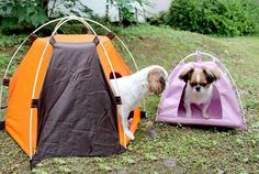 Loghot Portable Folding Pet House Tent for Small Medium Dogs Cats Bed Tent…