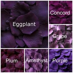 Choose from our dark shades of Purple silk rose petals.  Our silk rose petals are made from a high quality micropeach polyester fabric to give them a realistic look and feel. They measure about 2 to 2 1/4 in diameter.  Use them to border an aisle runner, fill them into cones for tossing, or simply decorate tables with them. If you are not sure how many you need, we have suggestions below or Convo us for help:  Tossing: 12 to 18 petals per guest  Table decoration: 50 to 100 petals per table…