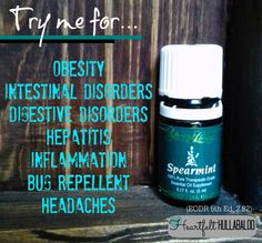 Young Livings Spearmint Try me for obesity intestinal disorders digestive disorders hepatitis inflammation bug repellent headaches Yl Oils, Natural Essential Oils, Essential Oil Blends, Pure Essential, Young Living Oils, Young Living Essential Oils, Arthritis, Healing Oils, Oil Benefits