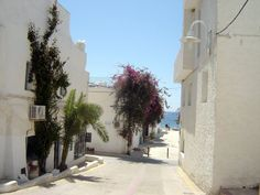 Agua Amarga © Robert Bovington Agua Amarga is a little white fishing village adjacent to a picturesque bay. Bougainvillea and other Mediterranean flowers adorn the façades of the houses.