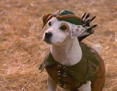 Wishbone may well be the ultimate highlight of my 1990s childhood. Probably has something to do with my high regard for classic literature, too!