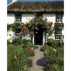 Kalaw ideas Thatched Cottage Carlingford Co Louth Ireland Canvas Art - The Irish Image Collection Design Pics x Cottage In The Woods, Cozy Cottage, Cottage Homes, Irish Cottage, French Cottage, Cottage Style, Orange Pastel, Irish Images, Jardin Luxuriant
