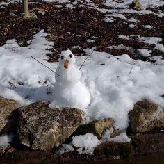 Nicht besonders groß und mehr Schneeente als Schneemann aber der Sohnemann freut sich wie Schneekönig   #familytime #family #wingtaikampfkunst #wingtailambsheim