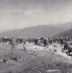 "This Day in WWII History: Feb 24, 1944: ""Merrill's Marauders"" hit Burma"