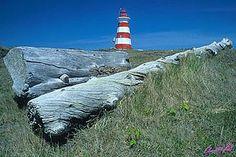 Western Lighthouse on Brier Island