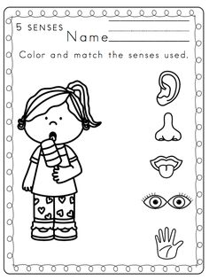 Preschool Printables: Toddler 5 Senses Printable