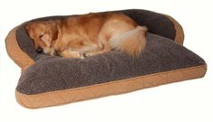 Our DOG or CAT beds are made from Top Quality, Non-Allergenic Materials. Description from skarro.com. I searched for this on bing.com/images