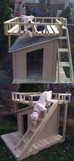 Make ladder for your dog so that it can move to the top of the pallet house if want to take sun bath and also, if it wants to be in the shade then come down and rest in the house.