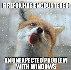 Firefox has encounted a problem - http://jokideo.com/firefox-has-encounted-a-problem/