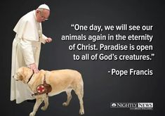 Nightly News with Lester Holt on Do all dogs go to heaven? Pope Francis says yes. reports tonightDo all dogs go to heaven? Pope Francis says yes. All Dogs, I Love Dogs, Puppy Love, Dog Quotes, Animal Quotes, Pet Loss Quotes, Dog Sayings, Prayer Quotes, Papa Francisco Frases