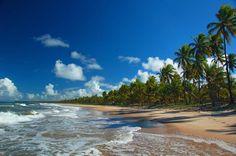 Imbassai beach - Guia de Imbassai: Atividades e Atrações. *Artigo.