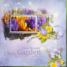 my little garden by  eudora