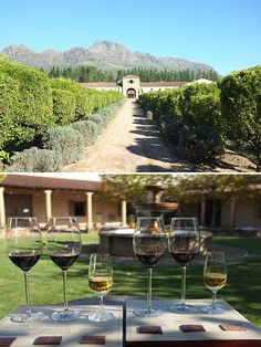 Gorgeous views, perfect glasses. Come visit Stellenbosch, South Africa!