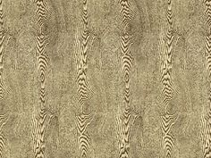 Hommage Collection   Wood Bark  Organic, Prints, Cotton  Cotton Blend, Linen, Fabric by Brunschwig  Fils