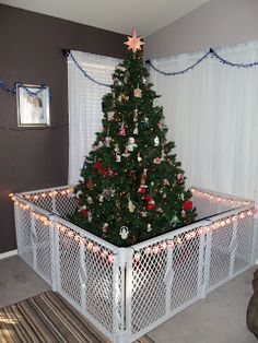 This is a little late but better late then never! IDEAS for babyproofing (or attempting to Duke proof) the tree! No more broken ornaments . Maybe