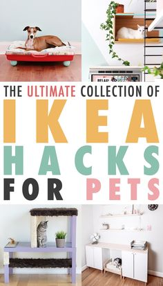 The Ultimate Collection of IKEA Hacks For Pets – The Cottage Market - Katzen Ikea Hacks For Cats, Cat Hacks, Ikea For Pets, Apartment Furniture, Ikea Furniture, Furniture Stores, Furniture Ideas, Ikea Dog, Ikea Cat Bed