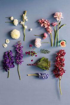 春だから楽しみたい!フラワーネイルで指先に色とりどりの花を
