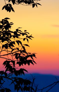 Gorgeous colors of a sunrise in the Smoky Mountains