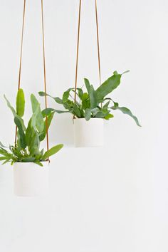 DIY clay and leather hanging planters