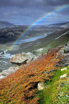 ✯ Parque Nacional de Los Glaciares, Patagonia Argentina