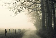 landscape photography, black and white, fog, foggy, road, rural, rustic, moody, 12 x 8 print