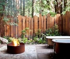 Backyard Privacy Fence Landscaping Ideas On A Budget 391 Privacy Fence Landscaping, Privacy Fence Designs, Backyard Privacy, Privacy Fences, Backyard Fences, Modern Landscaping, Backyard Landscaping, Landscaping Ideas, Fencing