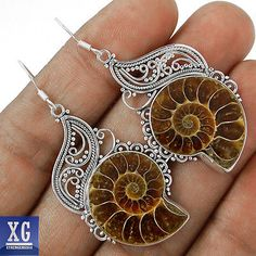 SE125606 12g AMMONITE (FOSSIL) 925 STERLING SILVER EARRINGS JEWELRY