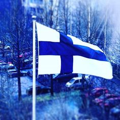 Happy Independence Day, darling Finland! #suomi #finland #itsenäisyyspäivä #independence #independenceday #6122015 #blueandwhite