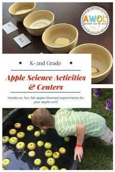 Apple Science Activities and Centers