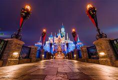 Disney has 11 worldwide theme parksat Walt Disney World, Disneyland Resort, Disneyland Paris, Tokyo Disney Resort, and Hong Kong Disneyland.While each of