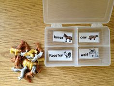 Sorting animals (found at dollar store)
