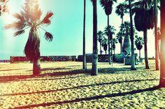 29 Tips for Living in LA