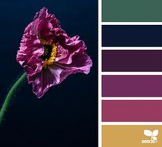 Color Flora | design seeds | Bloglovin'