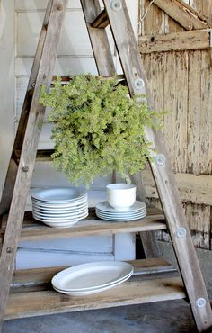 "Salvage Dior: "" Vintage Garden DIY "" - wooden ladder plus reclaimed wood plank shelves"