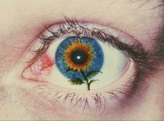 the look of your eyes
