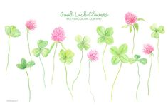 Watercolor Clipart Good Luck Clovers - 4 leaf clovers, 3 leaf clovers, pink clover flowers for instant download by CornerCroft on Etsy