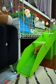 DIY Guinea pig stair