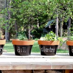 Chalkboard planters!  Pick up terra cotta pots on clearance at the end of summer...