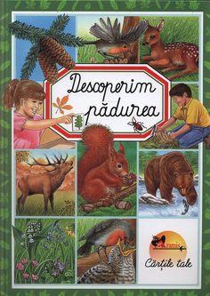Emilie Beaumont - Descoperim Padurea - - elefant.ro