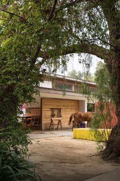 The Untold Stories Behind the Legendary Homes of Luis Barragán #dwell #luisbarragan #modernarchitecture #moderndesign