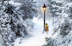 Narnia - Fictional Places We Wish Were Real - Photos