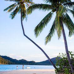 Palawan es la isla de los paisajes imposibles, con los farallones de roca caliza que se hunden en aguas de colores como de piedras preciosas.
