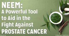 Animal research suggests nimbolide may shrink prostate tumors; however, it is not yet tested in humans, so further research will be required. http://articles.mercola.com/sites/articles/archive/2016/10/24/neem-prostate-cancer.aspx