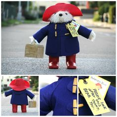 Paddington Teddy Bear is visiting us in Prague. I bought one Paddington when I was visiting England with my husband, daughter and his boyfriend who lived in England for many years. Paddington is a beautifully designed teddy bear I love a lot. He seems to have travelled the whole world. I wish I will do the same one day and I hope he will like his new home in Prague.