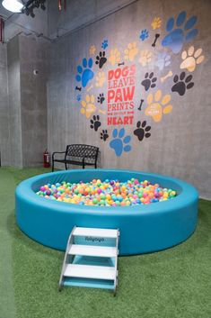 Dog Grooming Shop This indoor dog park is the perfect date for you and your dog - NOLISOLI.Dog Grooming Shop This indoor dog park is the perfect date for you and your dog - NOLISOLI Dog Kennel Cover, Diy Dog Kennel, Puppy Playground, Indoor Dog Park, Dog Boarding Kennels, Dog Bedroom, Daycare Design, Puppy Room, Dog Cafe