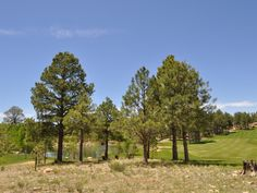 Home Site 296 | 2618 E Buena Vista Ct | 37,724 square feet | 0.80 acres | Offered at $645,000