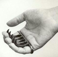 "Bagh Naka is a Hindu term for a weapon from India, which means ""tiger claws"" in English. This claw-like weapon is made to fit the knuckles or has a hole on each end for the pinky and index finger to fit. This weapon has three to five curved blades that are concealed in the palm of the hand."