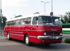 Ikarus-55 Lux Bus Art, New Bus, Colorful Artwork, Vintage Models, Vintage Trailers, Caravans, Old Cars, Motorhome, Cars And Motorcycles