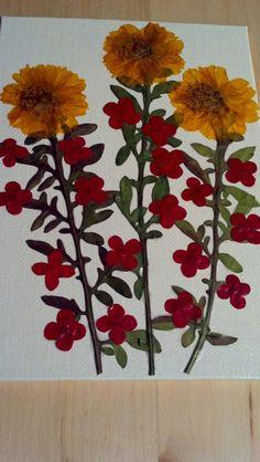 Pressed+Flower+Art+on+5+x+7+Canvas+Hawaiian+by+FlowerFelicity,+$29.99
