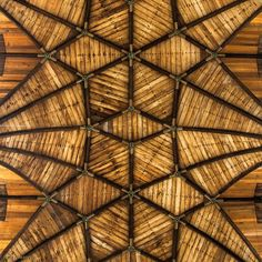 16th Century Wood Vaulted Ceiling St Bavo Cathedral in Ghent, Belgium